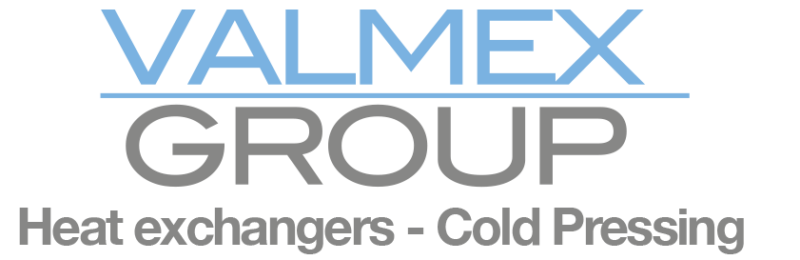 Logo_Valmex